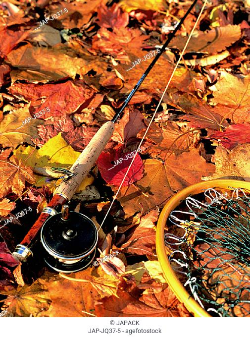 Fishing rod and net