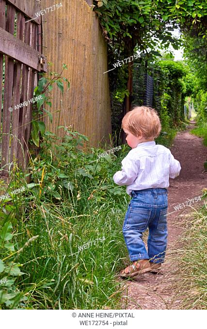 Toddler walking along alley seen from behind. Graurheindorf in Bonn, Germany