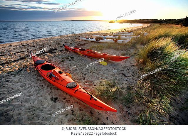 Sea kayaks on a beach on French Island, Victoria, Australia