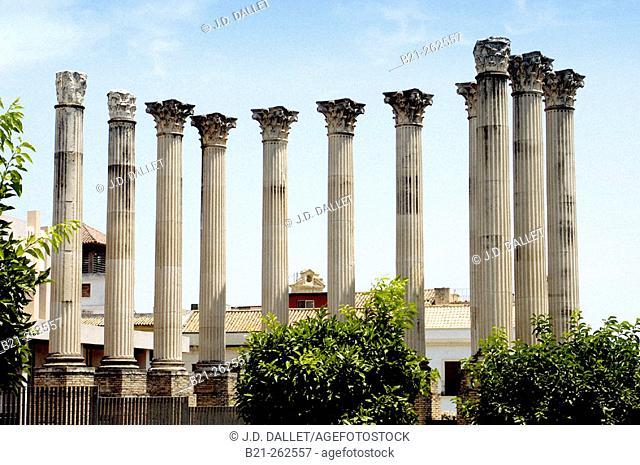 Columns of Roman temple. Córdoba. Spain
