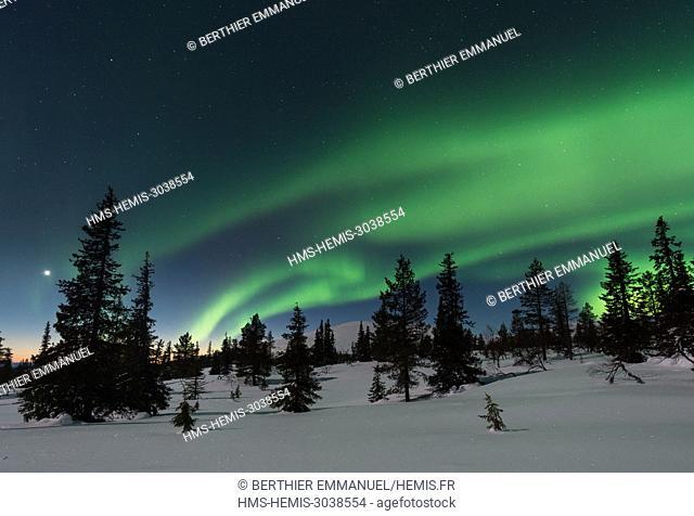 Finland, Lapland, Muonio, northern light above Pallas-Yllästunturi nationalpark