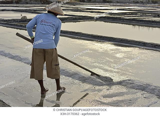 salt fields at Karangjahe, near Lasem, Java island, Indonesia, Southeast Asia