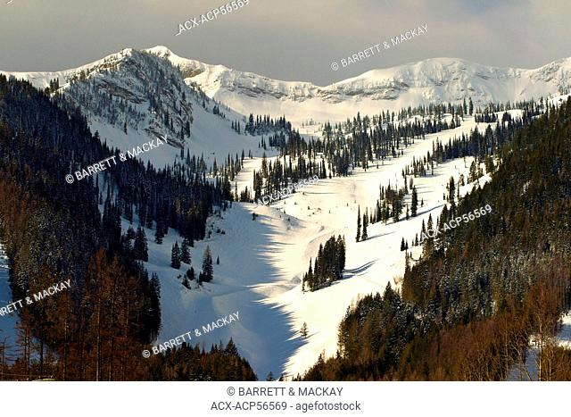 Lizard Rocky Mountain Range, Fernie, British Columbia, Canada