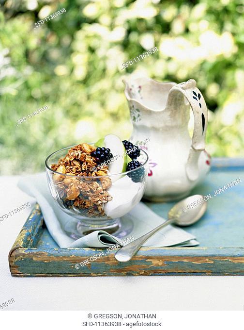 Muesli with yoghurt, apples and blackberries on a garden table