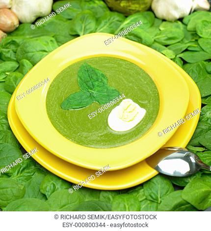 cream spinach soup