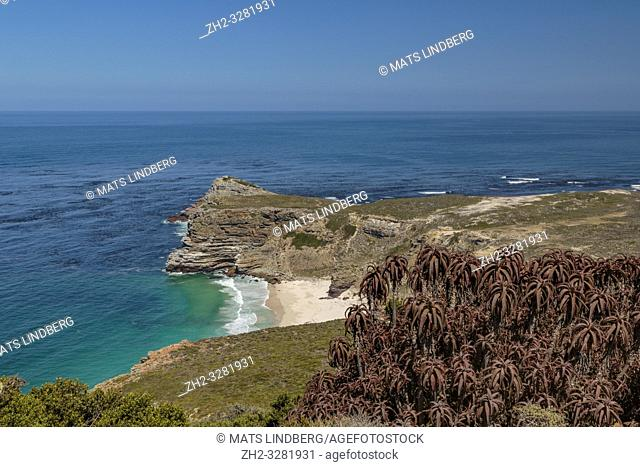View over Cape of good hope at Cape point with bushes and ocean, Cape point, South Africa