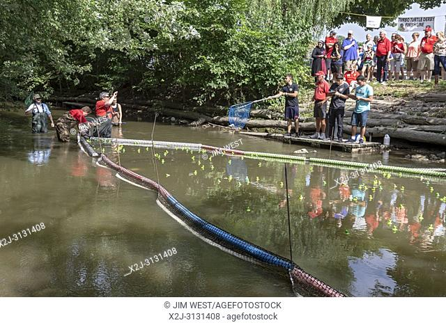 Dearborn, Michigan - Race officials pick out the winners of the plastic turtle race on the Rouge River during the annual Dearborn homecoming festival