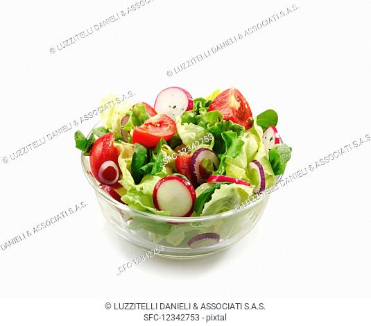 A mixed salad with garden lettuce, lamb's lettuce, tomatoes and radishes