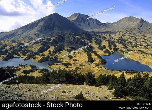 Massif of Carlit, Département Pyrénées-Orientales, Region Languedoc-Roussillon, France, Europe