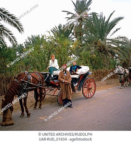 Eine Kutschfahrt durch die Oase Gabès, Tunesien 1970er Jahre. A carriage ride through the oasis of Gabès, Tunisia 1970s