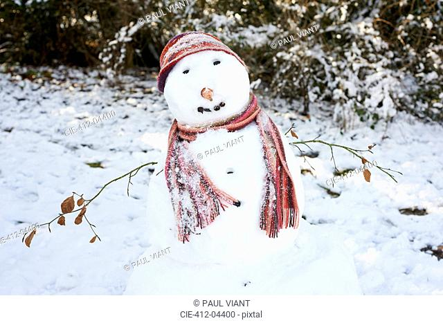 Snowman wearing scarf and hat