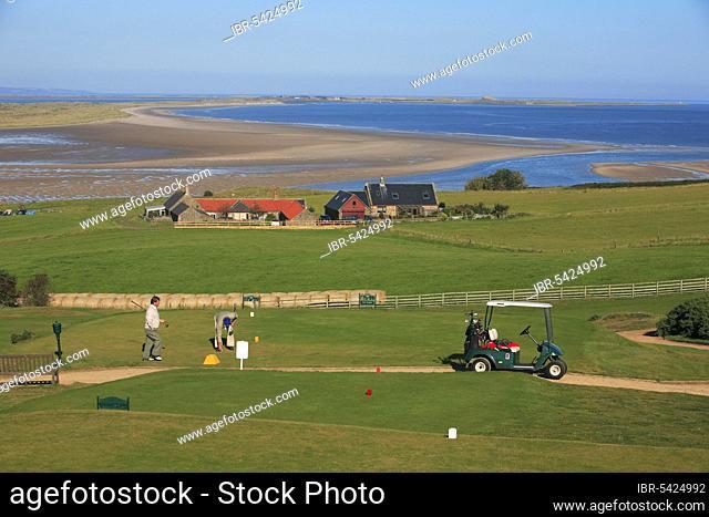 Golf course, Bamburgh, Budle Bay, Northumberland national park, England, United Kingdom, Europe