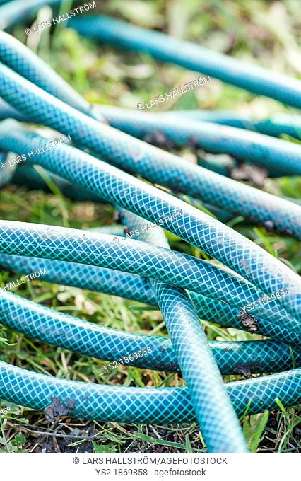Watering hose lying on grass in vegetable garden