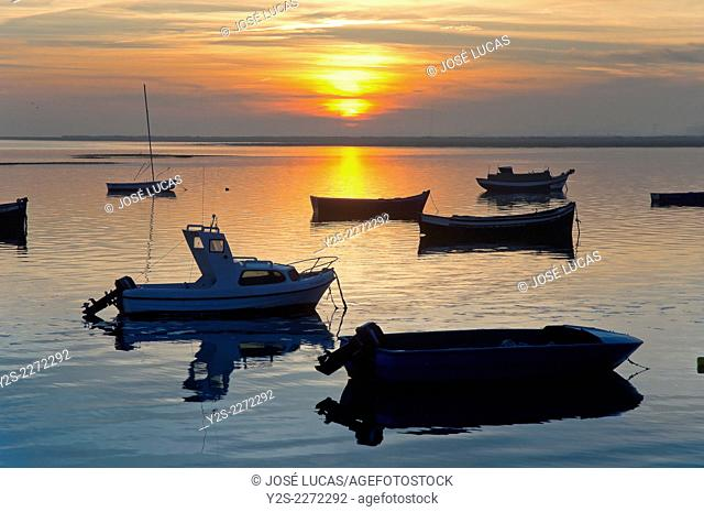 Boats in the Bay at dusk, Puerto Real, Cadiz province, Region of Andalusia, Spain, Europe