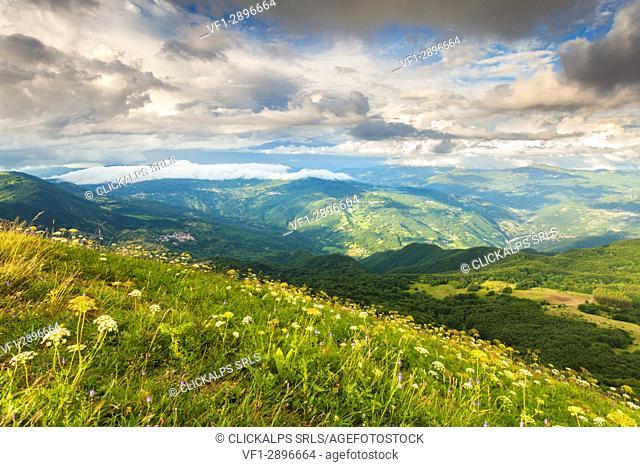 Ligurian Apennines, Alessandria province, Piedmont, Italy, Europe