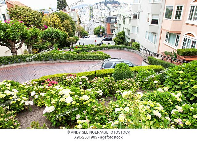 The Famous Lombard Street in San Francisco, California, USA