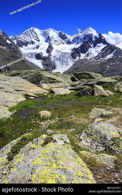 Piz Tschierva, 3546 m, Piz Bernina, 4049 m, Biancograt, Piz Roseg, 3937 m, Graubuenden, Switzerland, Europe
