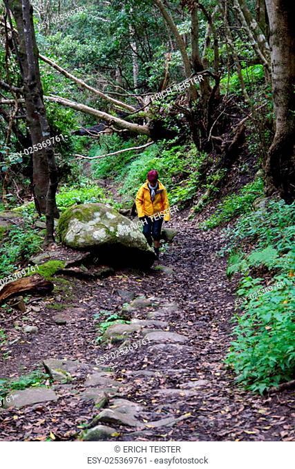 hike in anagagebirge around chamorga,anagagebirge,tenerife,canary islands,spain