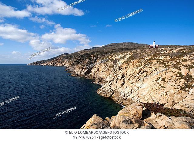 Punta di Capel Rosso and Cala Schizzatoio, Giglio Island, Grosseto, Tuscany, Italy