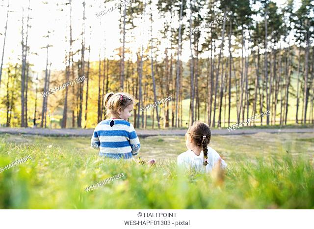Two girls sitting in meadow