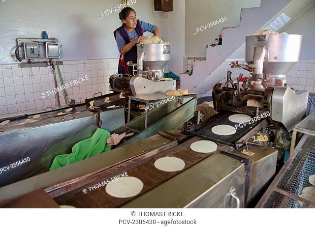 Mexico, Guanajuato, Woman Making Tortillas; San Luis De La Paz