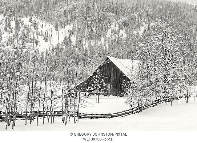 A black and white image of an old barn in a snowy field near Twin Lakes, Idaho