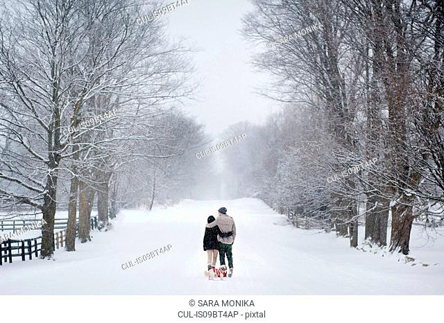 Romantic young couple walking dog in snow covered forest, rear view, Ontario, Canada