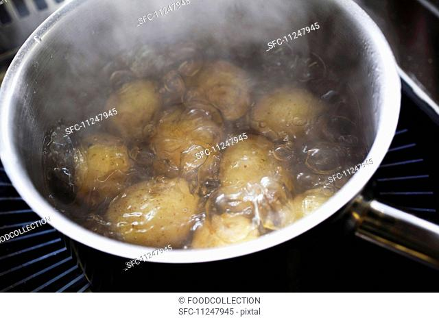 preparation of a potato salad, potatoes in a pot of boiling water