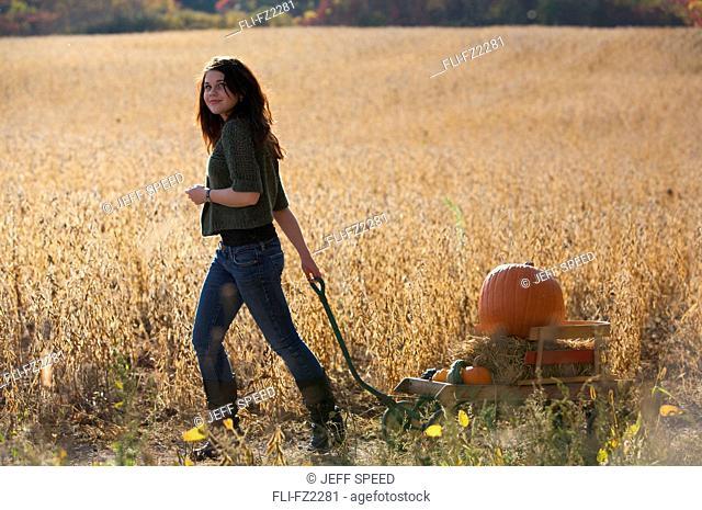 Artist's Chice: Girl pulling wagon with pumpkin in farmer's field, Vittoria, Ontario