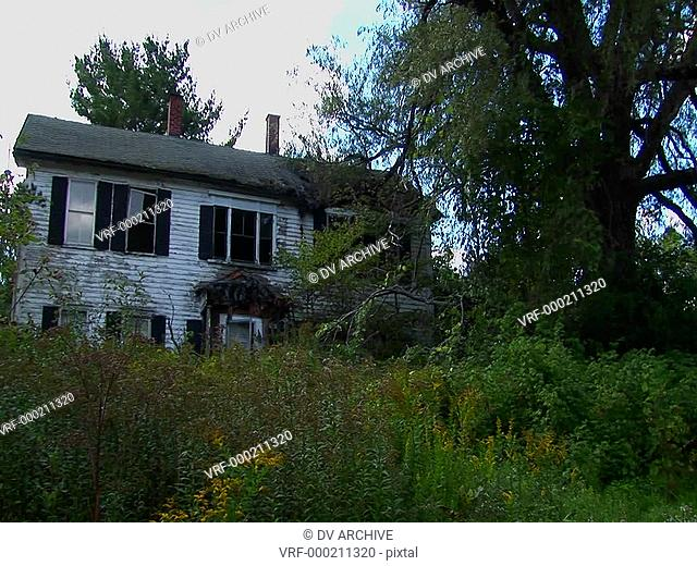 An old abandoned house overgrown with trees and brush