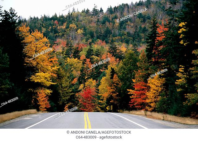 National Park of Acadia. Maine. U.S.A