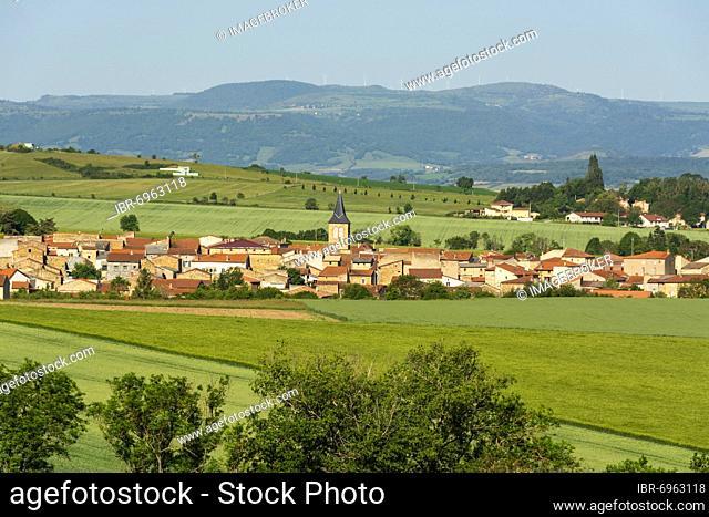 View of the village of Lamontgie in Limagne plain, Puy de Dome department, Auvergne-Rhone-Alpes, France, Europe
