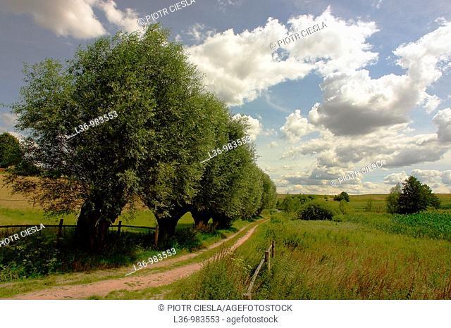 Poland  Mazowsze region