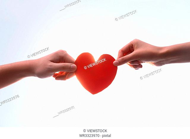 Men and women hand features