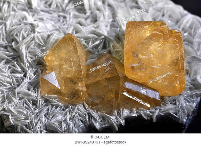 scheelite crystals on muskovite
