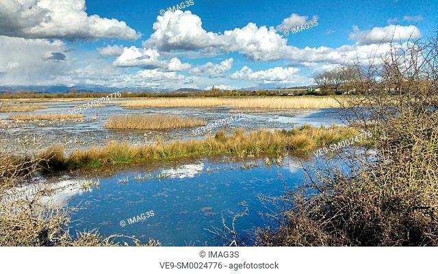 Lake of Salburua, Vitoria Gasteiz, Alava, Basque Country, Spain