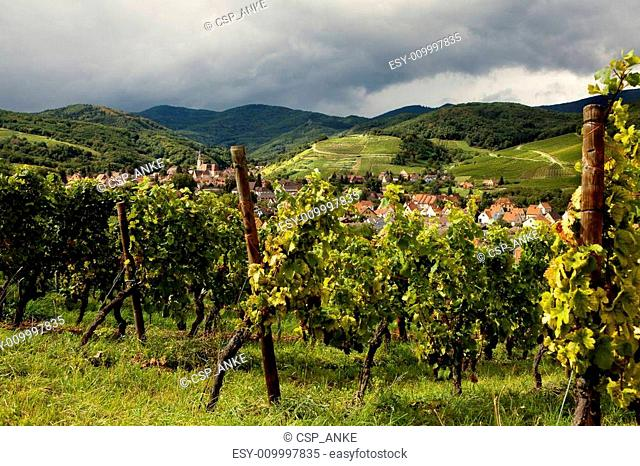 Andlau wine village Alsace