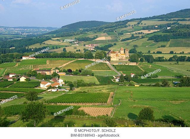 Chateau, Pierreclos, France, Bourgogne, Burgundy