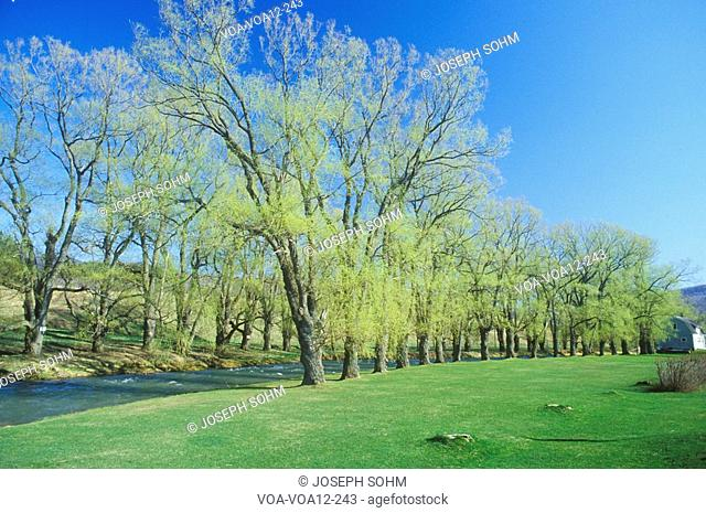 River in Springtime, Williamstown, Massachusetts
