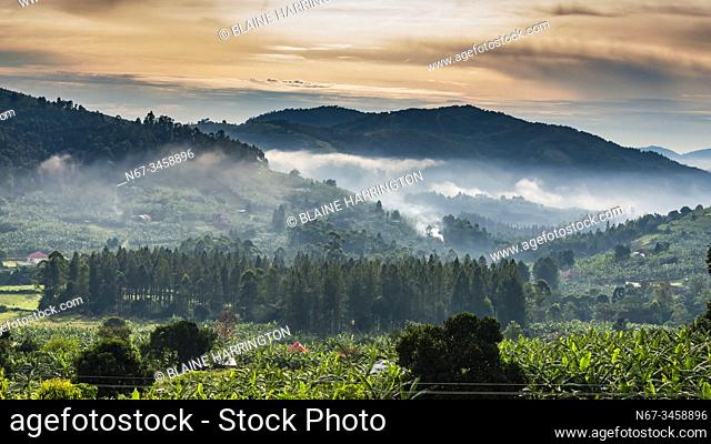 Beautiful landscape with fog, on road between Queen Elizabeth NP and Bwindi Impenetrable Forest, Uganda