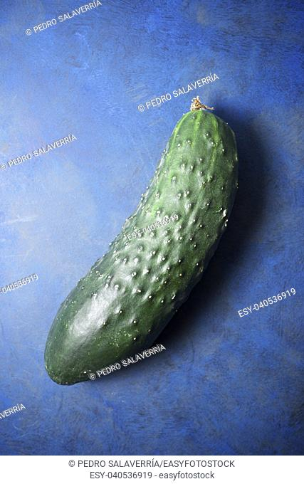Close-up of a cucumber on a blue background