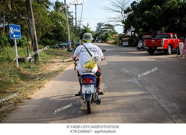 Man and a dog on a scooter, Ko (Koh) Lanta, Thailand