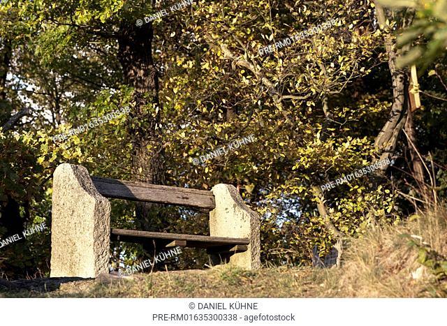Bench, Harzgerode-Alexisbad, Harz District, Harz, Saxony-Anhalt, Germany / Bank, Harzgerode-Alexisbad, Landkreis Harz, Harz, Sachsen-Anhalt, Deutschland