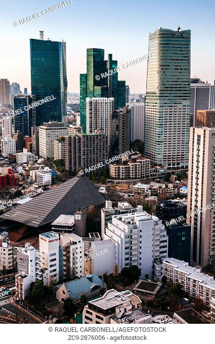 Tokyo skyline, Tokyo, Japan