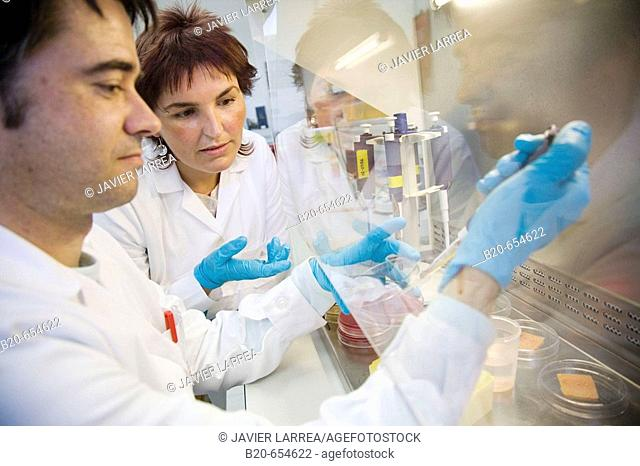 Microbiology laboratory. Light pulses technology for food preservation (fishing products). Microbiological analysis. AZTI-Tecnalia