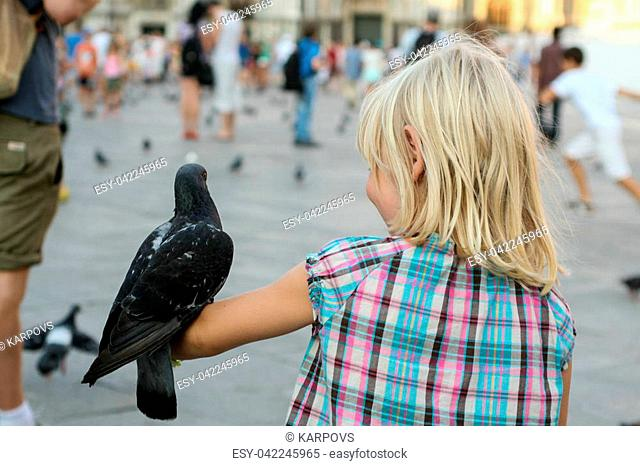 Summer. Italy. Venice. Piazza San Marco. A dove sits on a child's arm in a plaid shirt