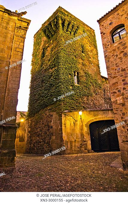 Torre de Sande Tower, Old Town of Cáceres, medieval town, World Heritage City by UNESCO, Caceres City, Caceres Province, Extremadura, Spain, Europe
