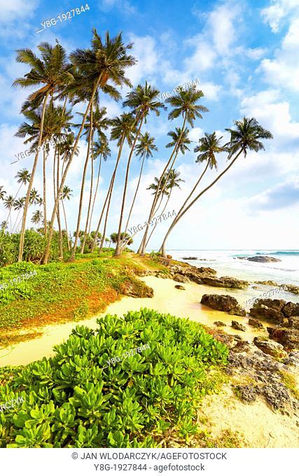 Sri Lanka - Koggala beach, village near Galle, Indian Ocean coast, Asia
