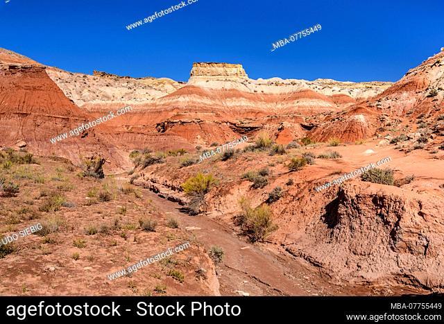 The USA, Utah, Kane County, Kanab, pariah Rimrocks, Toadstools Trail
