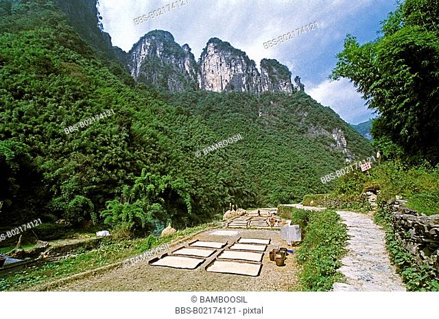 Exquisite view of mountains with pathway in foreground, The scenery of Miao minority housing in Dehang, Jishou City, Xiangxi Prefecture, Hunan Province